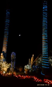 christmas_in_the_desert